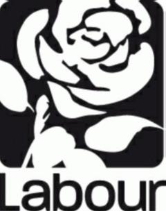 Labour & Co-operative (logo)